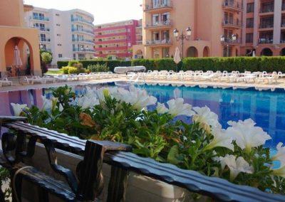 Sunny Beach - 1 Bed Apartment 1